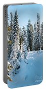Winter In Yellowstone Portable Battery Charger
