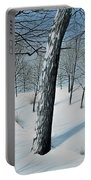 Winter Maple Portable Battery Charger