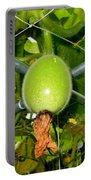 Winter Melon In Garden 1 Portable Battery Charger