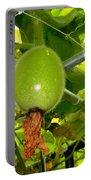 Winter Melon In Garden 2 Portable Battery Charger