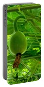 Winter Melon In Garden 3 Portable Battery Charger