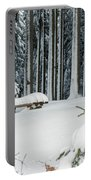Winter Moments In Harz Mountains Portable Battery Charger