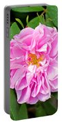 Winter Park Rose Portable Battery Charger