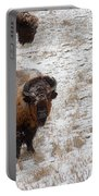 Winter Pasture Portable Battery Charger