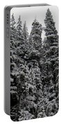 Winter Pine Spires Portable Battery Charger