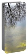 Winter Pond Reflections Portable Battery Charger