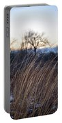 Winter Prairie Grass At Dusk Portable Battery Charger