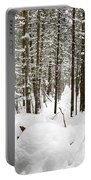 Winter Scene Print Portable Battery Charger