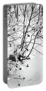Winter Shrubs, New Hampshire Portable Battery Charger