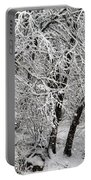 Winter Storm Skylar Portable Battery Charger