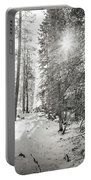 Winter Sunshine Forest Shades Of Gray Portable Battery Charger