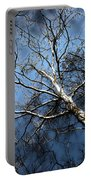 Winter Sycamore Portable Battery Charger