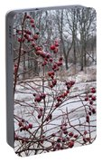 Winter Time Frozen Fruit Portable Battery Charger