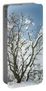 Winter Tree At Berry Summit Portable Battery Charger