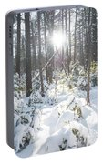 Winter Under The Sun Portable Battery Charger