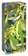 Winter Wattle Portable Battery Charger