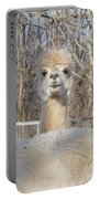 Winter White Alpaca Portable Battery Charger