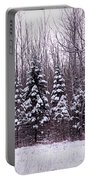 Winter White Magic Portable Battery Charger