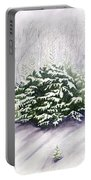 Winter Wind Portable Battery Charger