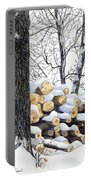 Winter Wood Portable Battery Charger