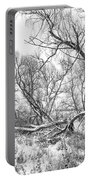 Winter Woods On A Stormy Day 2 Bw Portable Battery Charger