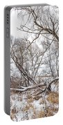 Winter Woods On A Stormy Day 2 Portable Battery Charger