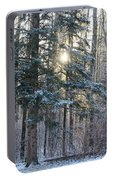 Winter's Midday Light Portable Battery Charger