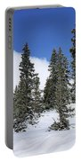 Winter's Peace Portable Battery Charger