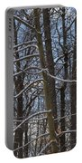 Winter's Touch Portable Battery Charger