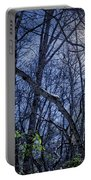 Wintersun Portable Battery Charger