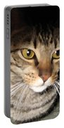 Wise Cat Portable Battery Charger