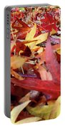Wishing For Fall Portable Battery Charger
