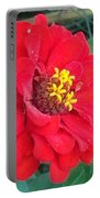 With Beauty As A Pure Red Rose Portable Battery Charger