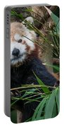 Wizened Red Panda Portable Battery Charger