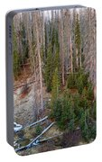 Wolf Creek Pass Forest Landscape Portable Battery Charger