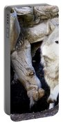 Wolf Den 1 Portable Battery Charger