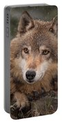 Wolf Face Portable Battery Charger