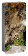 Wolf On Patorl Portable Battery Charger