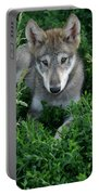 Wolf Pup Portrait Portable Battery Charger