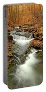 Wolf Run 5 Portable Battery Charger
