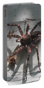 Wolf Spider Sunlight Portable Battery Charger