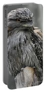 Wonderful Patterned Feathers On A Tawny Frogmouth Bird Portable Battery Charger