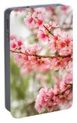 Wonderful Pink Cherry Blossoms At Floriade Portable Battery Charger