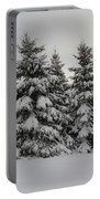 Wonderful Winter Portable Battery Charger