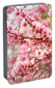 Wonderfully Delicate Pink Cherry Blossoms At Canberra's Floriade Portable Battery Charger