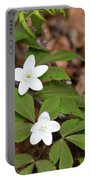 Wood Anemone Blooming Portable Battery Charger