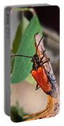Wood Beetle Exploring Portable Battery Charger