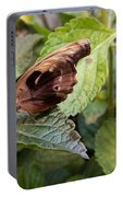 Wood Butterfly Portable Battery Charger