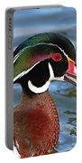 Wood Duck Drake Calling In Spring Courtship Portable Battery Charger