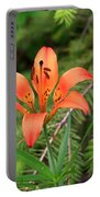 Wood Lily Also Called Prairie Lily Or Western Red Lily Portable Battery Charger